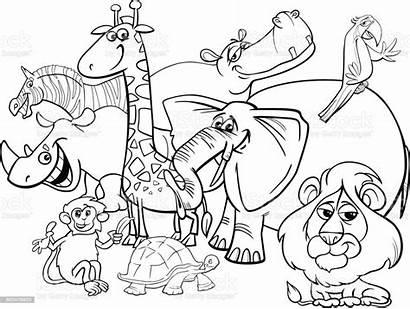 Coloring Animals Safari Cartoon Africa Illustration Animal