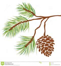 pine tree branch and cone vector royalty free stock images image 21913389 rehearsal dinner