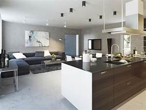 Deco Piece A Vivre Avec Cuisine Ouverte : d co d 39 une maison d 39 architecte ~ Premium-room.com Idées de Décoration