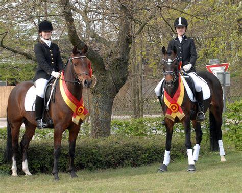 bred siege pferdestammbuch weser ems e v aktuelles