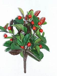 Busch Mit Roten Beeren : floraseta ~ Orissabook.com Haus und Dekorationen