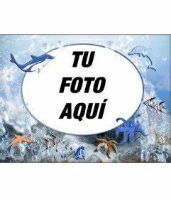 Marco para fotos redondo de animales marinos para poner tu foto con pulpos, Fotoefectos