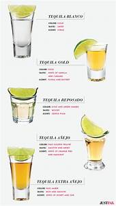 Tequila 101 For This Cinco de Mayo The Style Edit