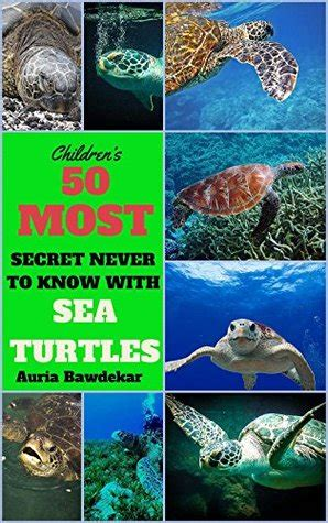 sea turtles  kids   secret