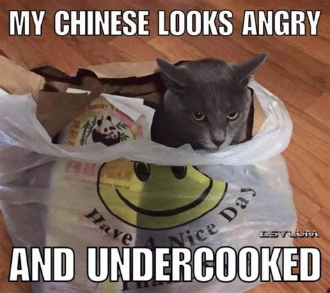 Funny Racist Memes - my chinese looks angry racist meme