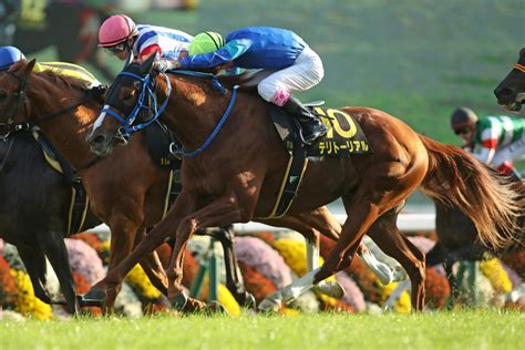 territorial godolphin stakes cassiopeia kyoto listed jpn 1st japan october