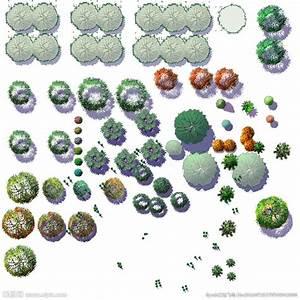 ps植物图例 cad植物图例 植物图例 cad植物图例大全 ps植物平面图例 手绘植物平面图例