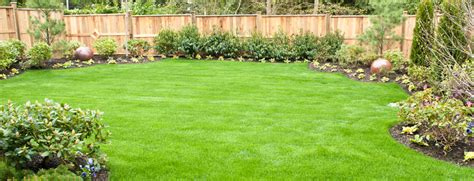 Lawn Fertilizing And Treating Services Grass Works Lawn