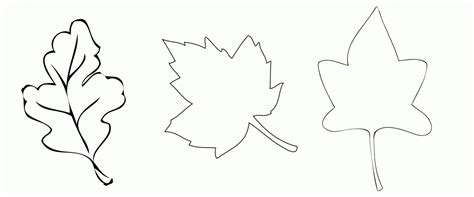 leaf cut out leaf template coloring home