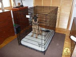 crate training for your german shepherd sheppedcom With dog crate size for german shepherd