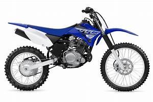 2019 Yamaha Tt