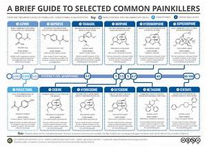 A Brief Guide To Common Painkillers
