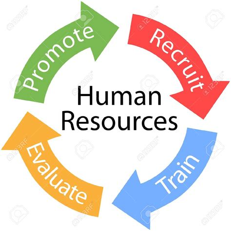 Resources Clipart Human Resource Management Clipart