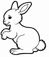 Pages Coloring Bunny Rabbit Colouring Spring Baby Animal Hutch Easter Template Super Animals Bunnies Templates Print Drawing sketch template