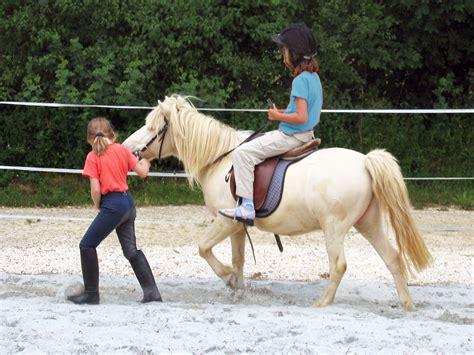horses beginner horse trail safe tn