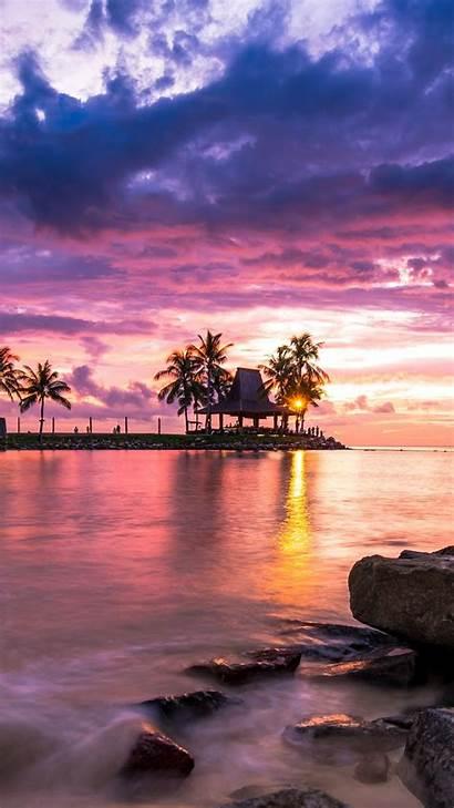 Sunrise Mobile Reflection Palm Sea Tree Nature