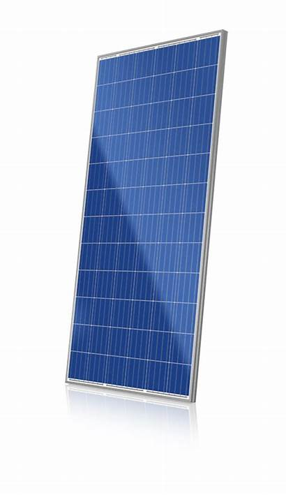 Solar Canadian Cs6x 320p 330p 330w Zonnepaneel