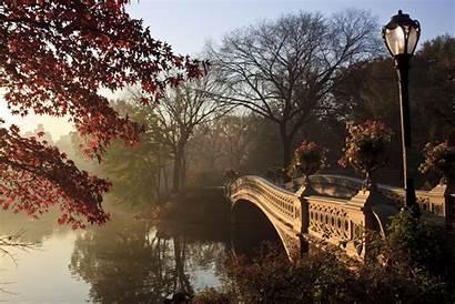 Central Park York Autumn 4k Wallpapers Hintergrund