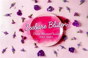 Welche Blumen Kann Man Essen : essbare bl ten welche blumen kann man essen und wann ~ Watch28wear.com Haus und Dekorationen