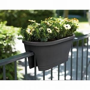 Balkonkasten Halterung Geländer : elho 60cm balkonkasten corsica flower bridge blumentopf blumenkasten balkon ebay ~ Watch28wear.com Haus und Dekorationen