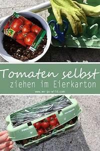 Was Kann Man Im Gewächshaus Anbauen : tomaten selber ziehen im eierkarton gew chshaus tomaten pflanzen tomaten anbauen und ~ A.2002-acura-tl-radio.info Haus und Dekorationen
