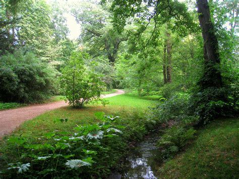 Filebotanischer Garten Der Tu Darmstadt  Img 7042jpg