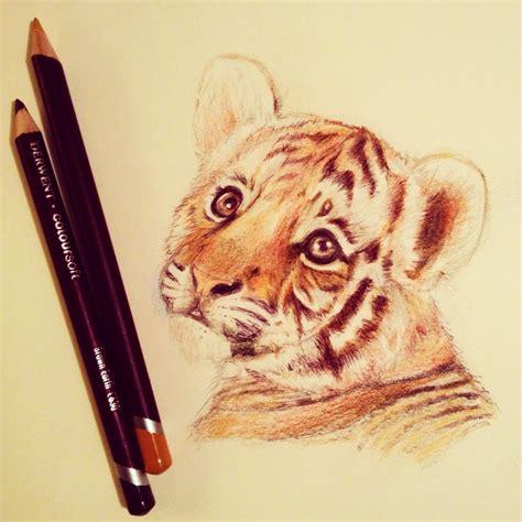 Tumblr Animals Drawings