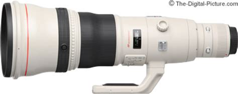 Canon Ef 800mm F 5 6l Is Usm canon ef 800mm f 5 6l is usm lens review