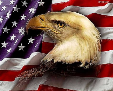 Animated Eagle Wallpaper - free patriotic wallpapers and screensavers wallpapersafari
