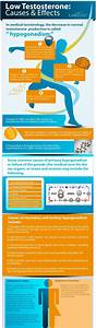 Low Testosterone Causes And Effects  Infographic