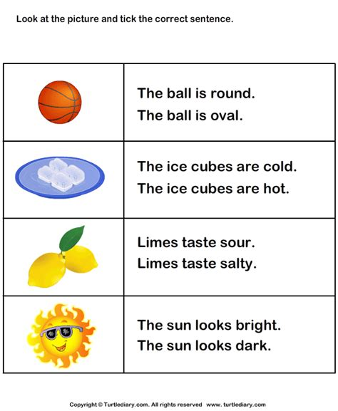 choose the sentence with correct adjective 1 worksheet