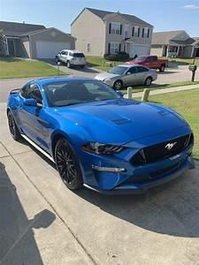FEF: Brand new 2019 Velocity Blue GT : Mustang