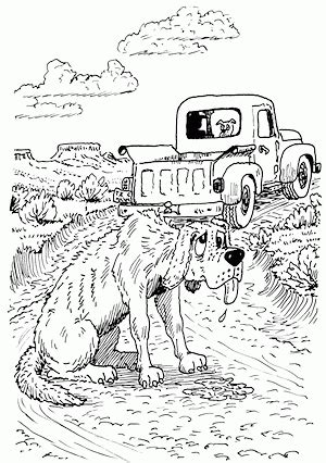 hank  cowdog coloring pages coloring home