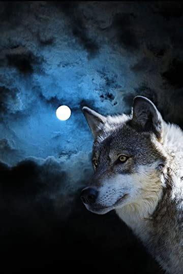 saving  wolf moonbound   camryn rhys