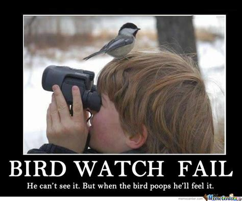 Watch Meme - bird watch fail by zatel meme center