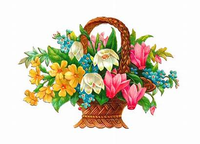 Flowers Graphics Flower Clipart Cliparts Clipground