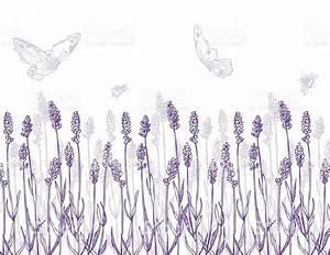 Lavender Border And Butterflies stock vector art 480344314 ...