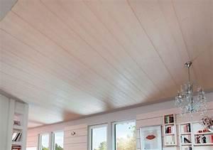 Holzdecke Streichen Kosten : holz decke stunning baumpaul tags warm holz stein schrank wein holzdecke weinkeller hlzern ~ Sanjose-hotels-ca.com Haus und Dekorationen