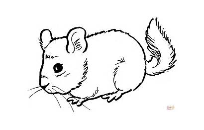 Coloring Mouse Pages Printable Paper Drawing