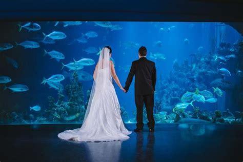 unusual wedding venues guides  brides blog