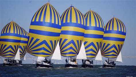 offshore championship  preview scuttlebutt