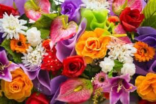wedding bouquets online as 14 flores mais populares em inglês da live