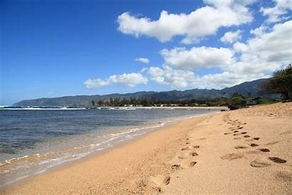 Seattle Beach Hawaii Chronicles Wolfepack