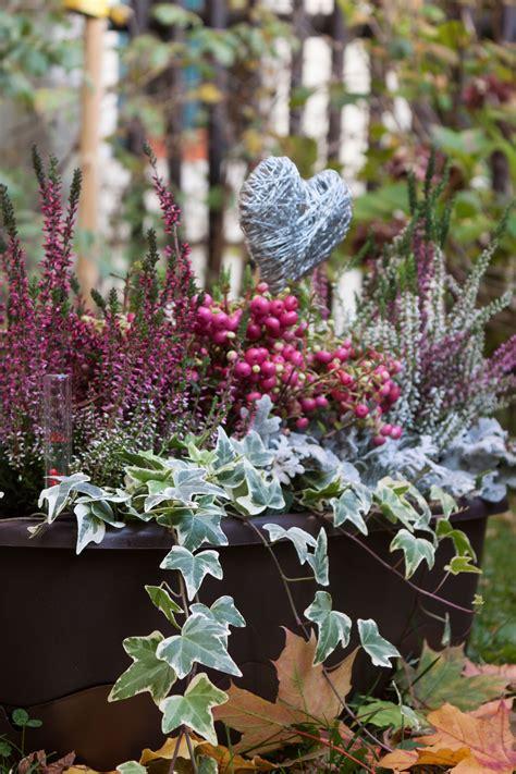 Freude Am Garten Im Herbst Und Winter by Auch Im Winter Sch 246 Ne Balkonk 228 Sten Ihr Findet Adelheids