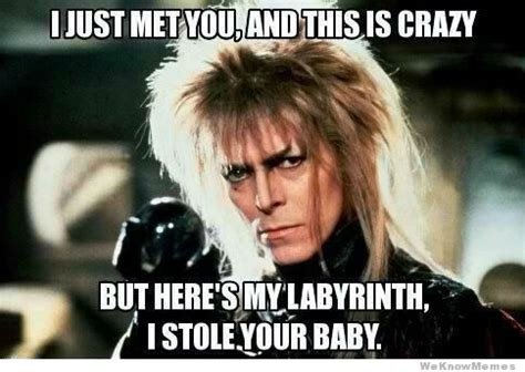 David Bowie Labyrinth Meme - what do you think of my labyrinth the horn book