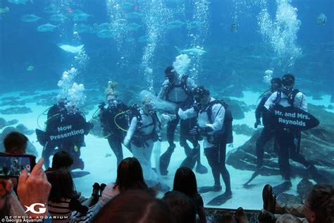 A Couple In Georgia Got Married Inside The Aquarium News