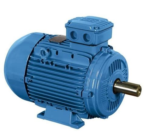 Induction Electric Motor by Induction Motor Electric Motors And Components Modern