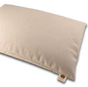 Organic Buckwheat Hull Pillow