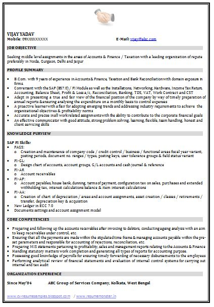 resume examples  industry  job title resume