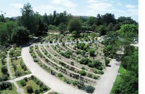 Jardin Botanique De Lyon : mus ums jardins botaniques et d veloppement durable ~ Farleysfitness.com Idées de Décoration